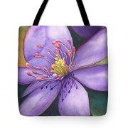 Purple's Passion Tote Bag