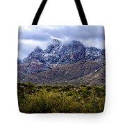 Pusch Ridge Snow No8 Tote Bag