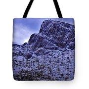 Pusch Ridge Snowfall Tote Bag