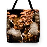Push And Pull Tote Bag