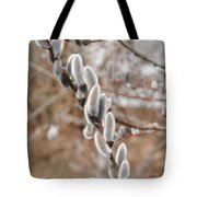 Pussy Willow 2 Tote Bag