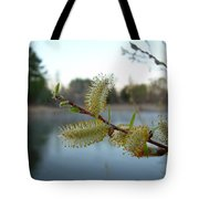 Pussy Willow Flowers Tote Bag