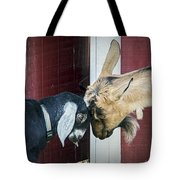 Putting Our Heads Together Tote Bag