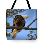 Puzzled 2 Tote Bag