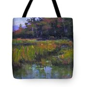 Pyramid Lake Marsh Tote Bag