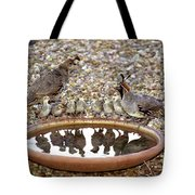 Quail Family Gathering Az Tote Bag