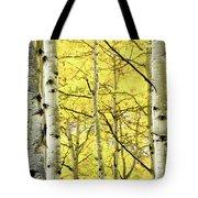 Quaking Aspen Fall Tote Bag