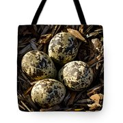 Quartet Of Killdeer Eggs By Jean Noren Tote Bag