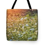 Queen Anne At Sunset Tote Bag