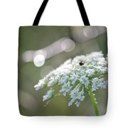 Queen Anne In The Morning 2 Tote Bag