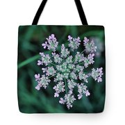 Queen Anne Tote Bag