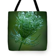 Queen Annes Lace - 365-164 Tote Bag