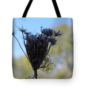 Queen Annes Lace In Autumn Tote Bag