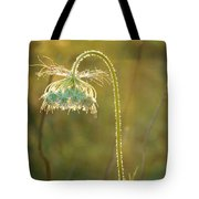 Queen Anne's Lace In Evening Tote Bag