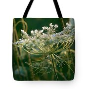 Queen Anne's Lace In Green Horizontal Tote Bag