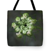 Queen Anne's Lace In Waiting Tote Bag