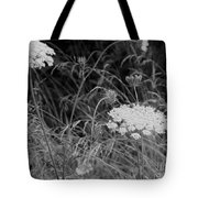 Queen Annes Lace Tote Bag