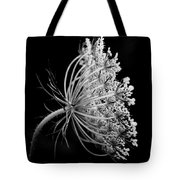 Queen Ann's Lace Side Tote Bag