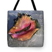 Queen Conch Peeking  Tote Bag