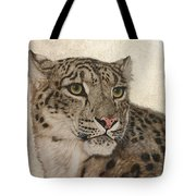Queen Of The Himalayas  Tote Bag
