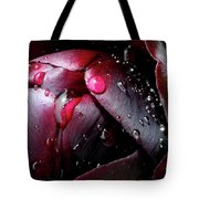 Queen Of The Night Cries In Joy Tote Bag