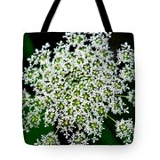 Queens Lace Flower Tote Bag
