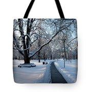 Queen's Park Pathway Tote Bag