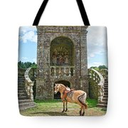 Quelven Village Square, Awaiting His Owner, Brittany, France Tote Bag