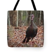 Questioning Wild Turkey Tote Bag