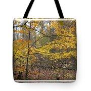 Quiet Autumn Morning Tote Bag
