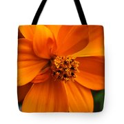 Quiet Passenger Tote Bag