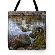 Quiet Reverie Tote Bag