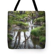 Quiet Stream Tote Bag