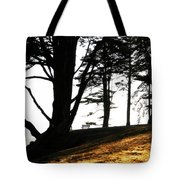 Quiet Time Of Day Tote Bag