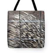 Quills Of An African Porcupine Tote Bag