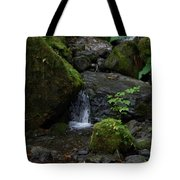 Quinault Washington Rain Forest Tote Bag