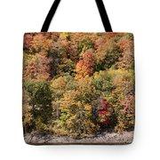 Quinnipiac River Color Tote Bag