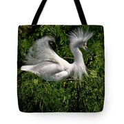 Quite The Doo Tote Bag