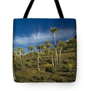 Quiver Tree Forest Tote Bag
