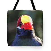 Quizzical Bird Tote Bag