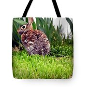 Rabbit As A Painting Tote Bag