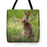 Rabbit Collector Square Tote Bag