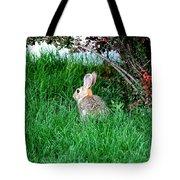 Rabbit Sitting Outdoors. Tote Bag