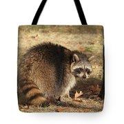 Raccoon #4 Tote Bag