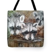 Raccoon Babies By Christine Lites Tote Bag by Allen Sheffield