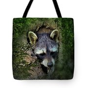 Raccoon In A Log Tote Bag