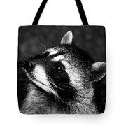Raccoon Looking Tote Bag