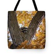Raccoon Nape Tote Bag