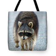 Raccoon On The Prowl Tote Bag