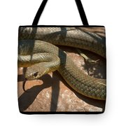 Racer On The Rio Grande Tote Bag